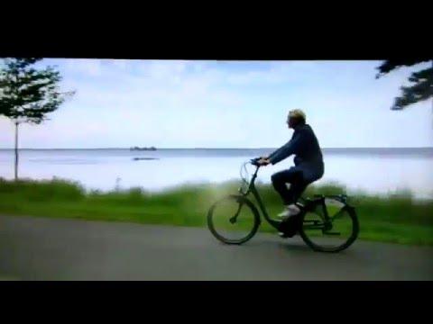 Fahrradverleih am Steinhuder Meer