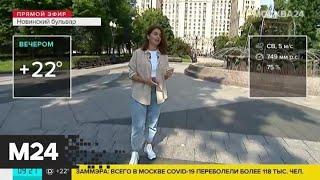 """""""Утро"""": до 25 градусов тепла ожидается в Москве в пятницу - Москва 24"""