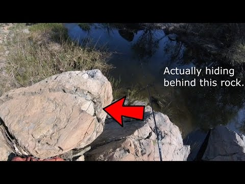 Fishing The San Diego River - They On BEDS!