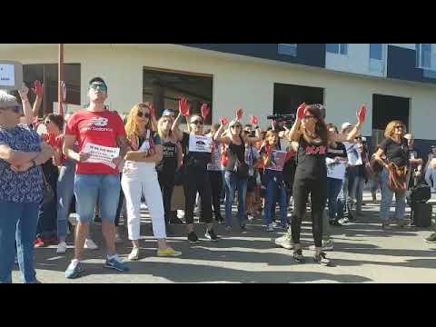 Los antitaurinos claman contra las corridas en Sarria