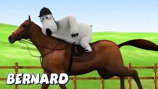 Download Bernard Bear | Horse Riding! AND MORE | Cartoons for Children | Full Episodes