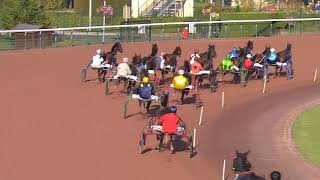 Vidéo de la course PMU PRIX DES SAGINES