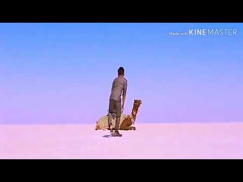 jigar-bala-hindi-songs-sambalpuri-song-mp4-video