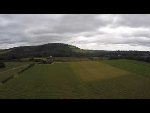 Denbies Wine Estate. United Kingdom. Drone 4k.