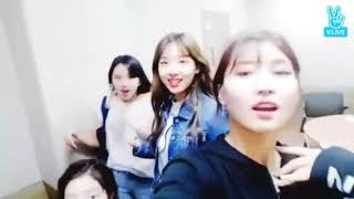Download [#Twicepink]Twice dancing&singing all song of Blackpink!!!(Playing with fire,AIFYL,...)