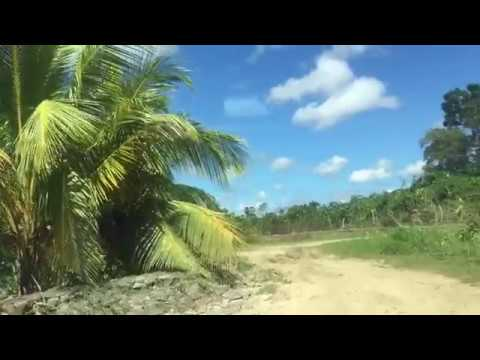 Avontuur  in Suriname Episode 6 - Monkshoop Saramacca Gronin