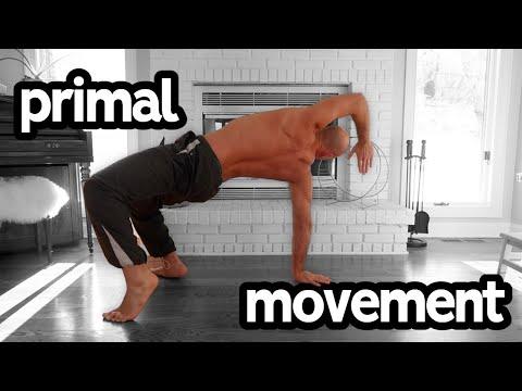 Primal Movement Beginner Flow Tutorial (Follow Along)