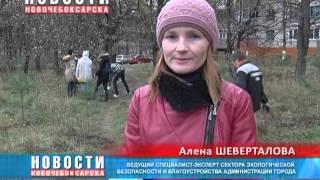В Ельниковской роще учащиеся МБОУ