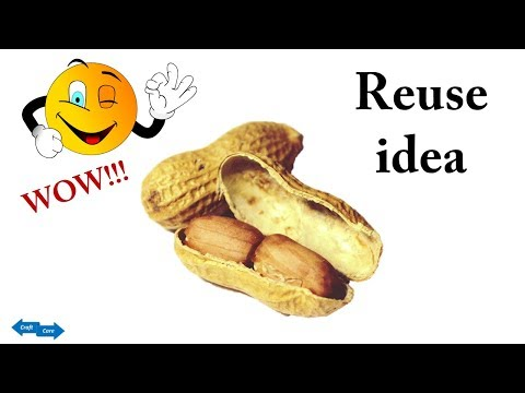 HM Make  Butterfly with waste Peanut Shell  How to make Peanut shell Craft