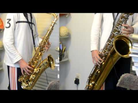 The Lion Sleeps Tonight / Lion King -  Tenor and Baritone Saxophone Duet