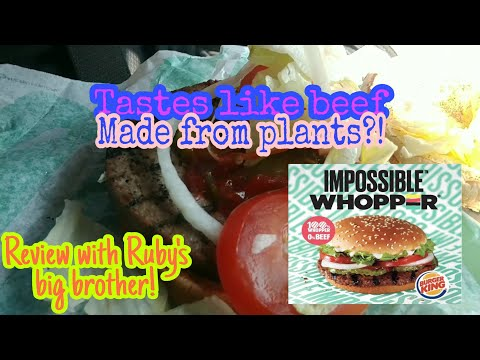 Impossible Whopper Review With Big Brother! |Ruby's Zoo