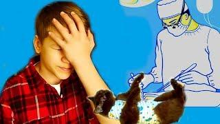 БЕРЕМЕННОЙ Кошечке Никисе СРОЧНО нужна ОПЕРАЦИЯ!!!