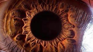 20 Фактов о Глазах, Которые Вас Поразят