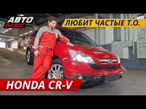 Высокая цена равно надежность? Honda CR-V | Подержанные автомобили