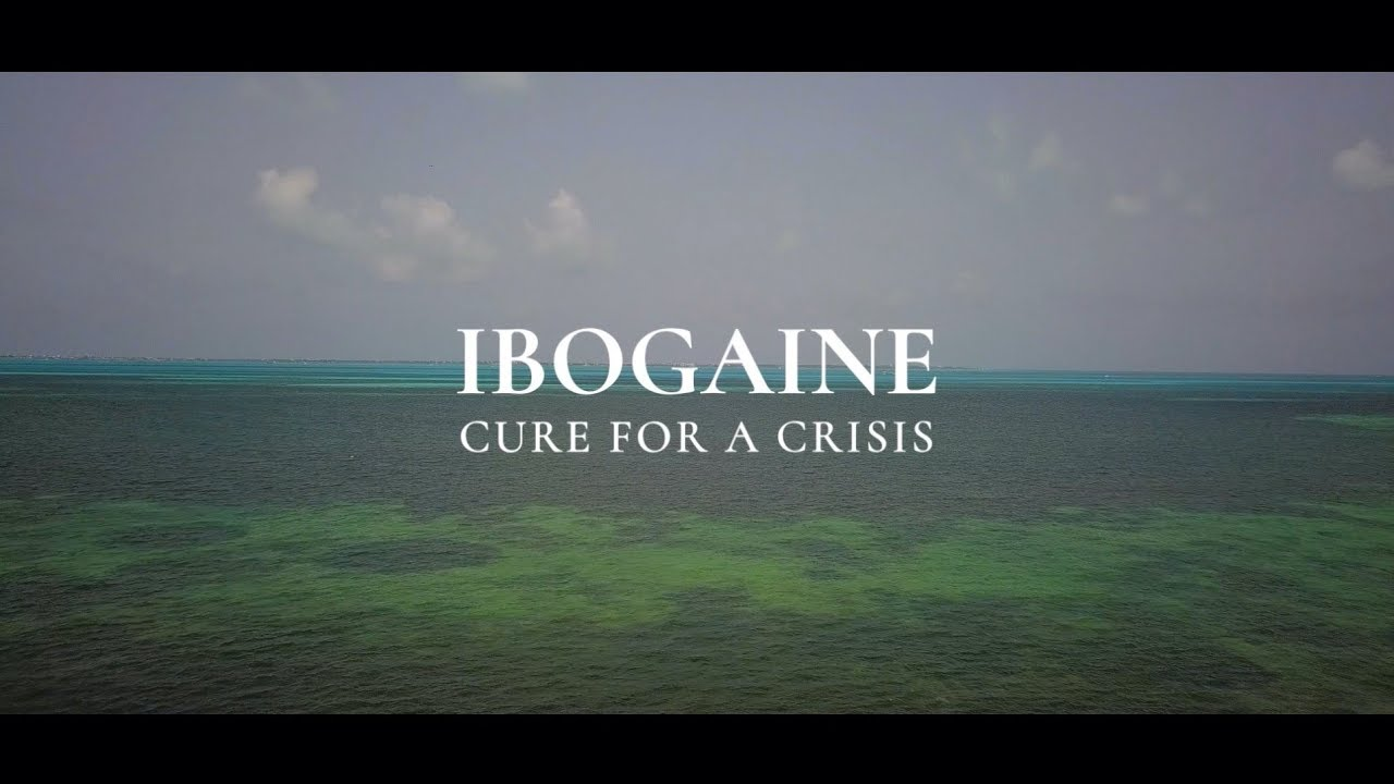 Ibogaine: Cure For A Crisis