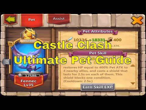 Castle Clash Ultimate Pet Guide All Pets Explained Recommended Setups