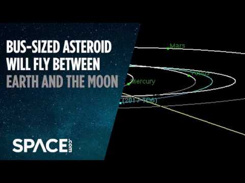 Bus-Sized Asteroid to Fly Between Earth and Moon