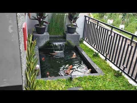 insfirasi kolam ikan koi minimalis, bisa dilahan sempit, depan rumah atau belakang rumah