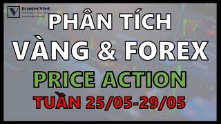✅ Phân Tích Vàng & Forex Theo Price Action - Lội Ngược Dòng - Tuần 25/05-29/05