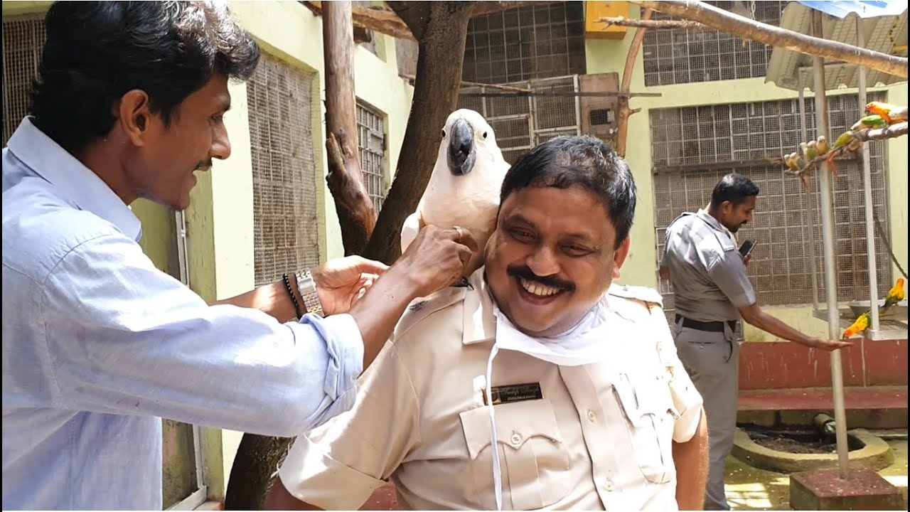 Affection Of Visitors For Lovely Exotic Bird Breeding Farm/ Philanthropists beside helpless Mankind.