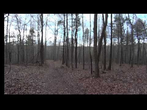 Carroll County Bigfoot Research Day1