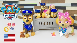 Paw Patrol Baby Chase and Skye bring the Babies Home from the Hospital Boy Nursery