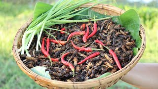 Yummy Cooking To Roast Crickets Delicious Recipe -  Cook Crickets Recipes  -  Village Food Factory