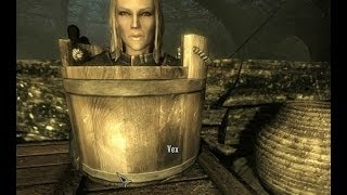 Skyrim funny moments and glitches