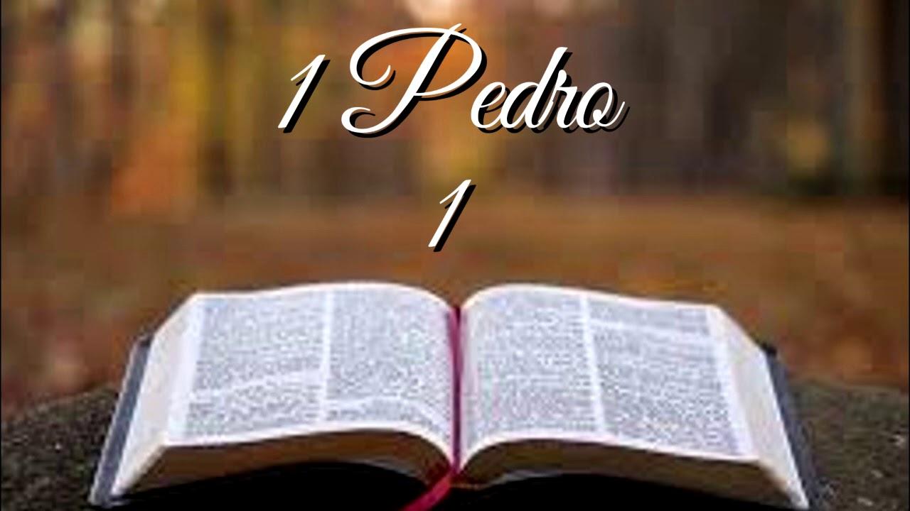 BÍBLIA 1 PEDRO 01 NAA