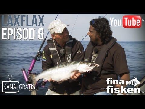 Fina Fisken TV - EPISODE 8 - Salmon Luck (English Subtitles)