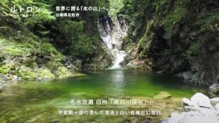 一面エメラルドグリーンの秘境! 日本名水百景にも選出された清流の故郷、「尾白川渓谷」