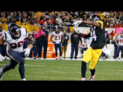 Antonio Brown throws touchdown to Lance Moore (Week 7, 2014)