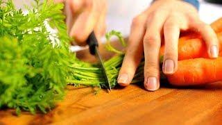 Полезные свойства морковной ботвы + Рецепт чая из боты моркови
