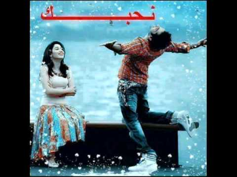 chikh lhamel