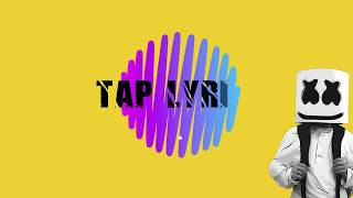 Marshmello Ft. Bastille - Happier   Lyric Video    Taplyrics