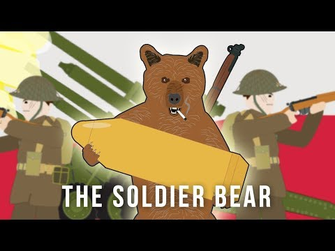 The Soldier Bear (Strange Stories Of World War II)