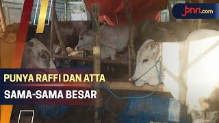 Milik Raffi Ahmad dan Atta Halilintar Sama-Sama Besar - JPNN.com
