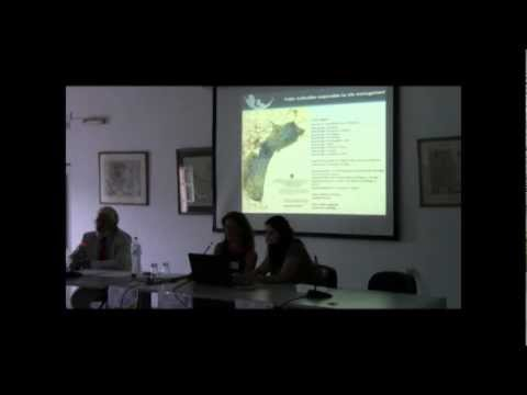 International Week on Sustainable Cultural Heritage Management,Dissemination event