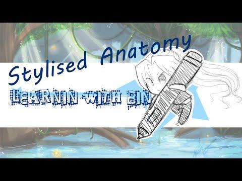 Learnin With Bin - Stylized anatomy tutorial