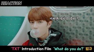 [리액션] TXT의 마지막(?) 멤버 공개?!  : Introduction Film -