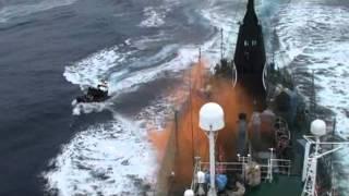 Steve Irwin activists throw butyric acid-containing bottles aiming at Yushin Maru No. 2 crewmen