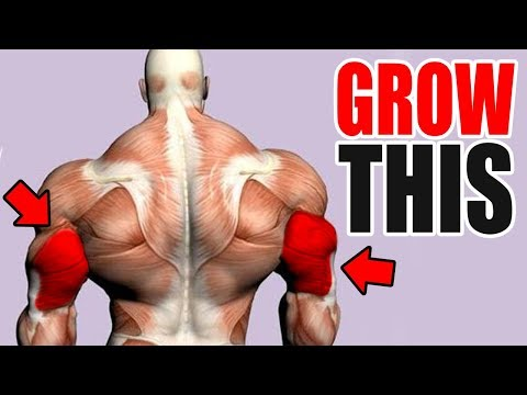 3 Best Exercises for BIG TRICEPS!