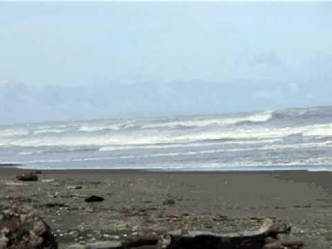 Sea Shore.AVI