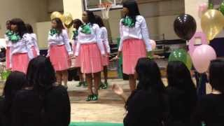 Wiley College Alpha Kappa Alpha Probate Fall 2k13 pt2