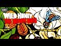 watch he video of The Beach Boys:  Wild Honey