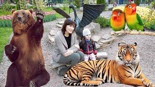 ВЛОГ Зоопарк  Дианка и животные/Vlogs We walk in the Zoo