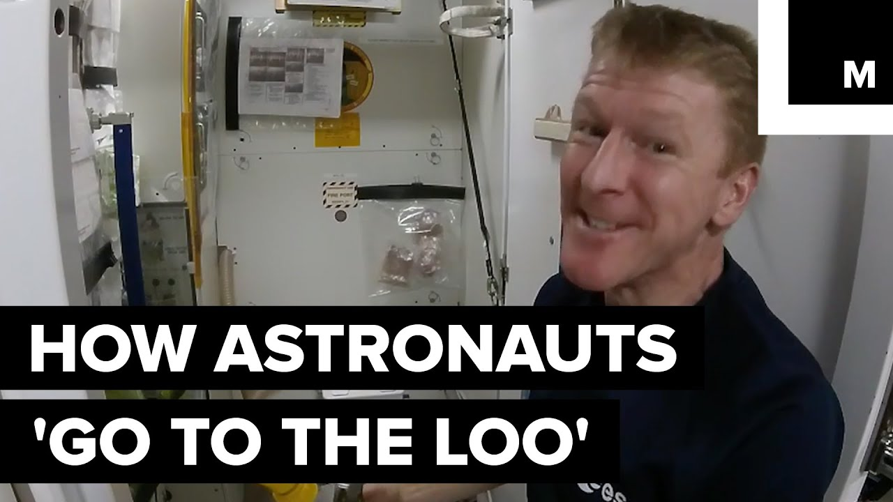 How astronauts use the bathroom - How Astronauts Go To The Loo In Space