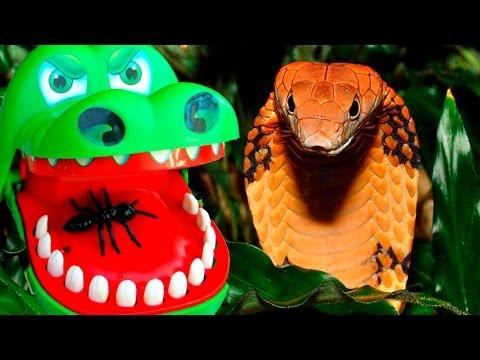 В ПАСТИ КРОКОДИЛА! Крокодил челлендж.Crocodile Dantist Мультик для детей
