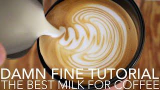 Скачать DAMN FINE TUTORIAL The Best Milk For Coffee