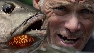 return-of-the-killer-catfish-river-monsters